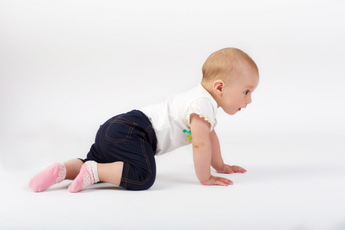 赤ちゃんはいつ頃からハイハイをするようになるの?