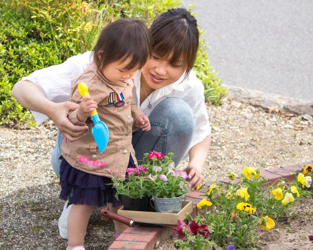植物を育てることは、そんなに簡単ではありません。